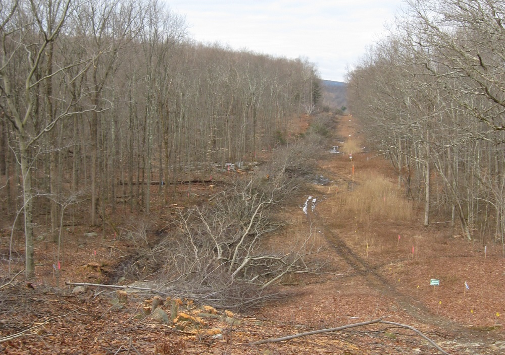 Submit Comments to FERC on PennEast's Amended Application14